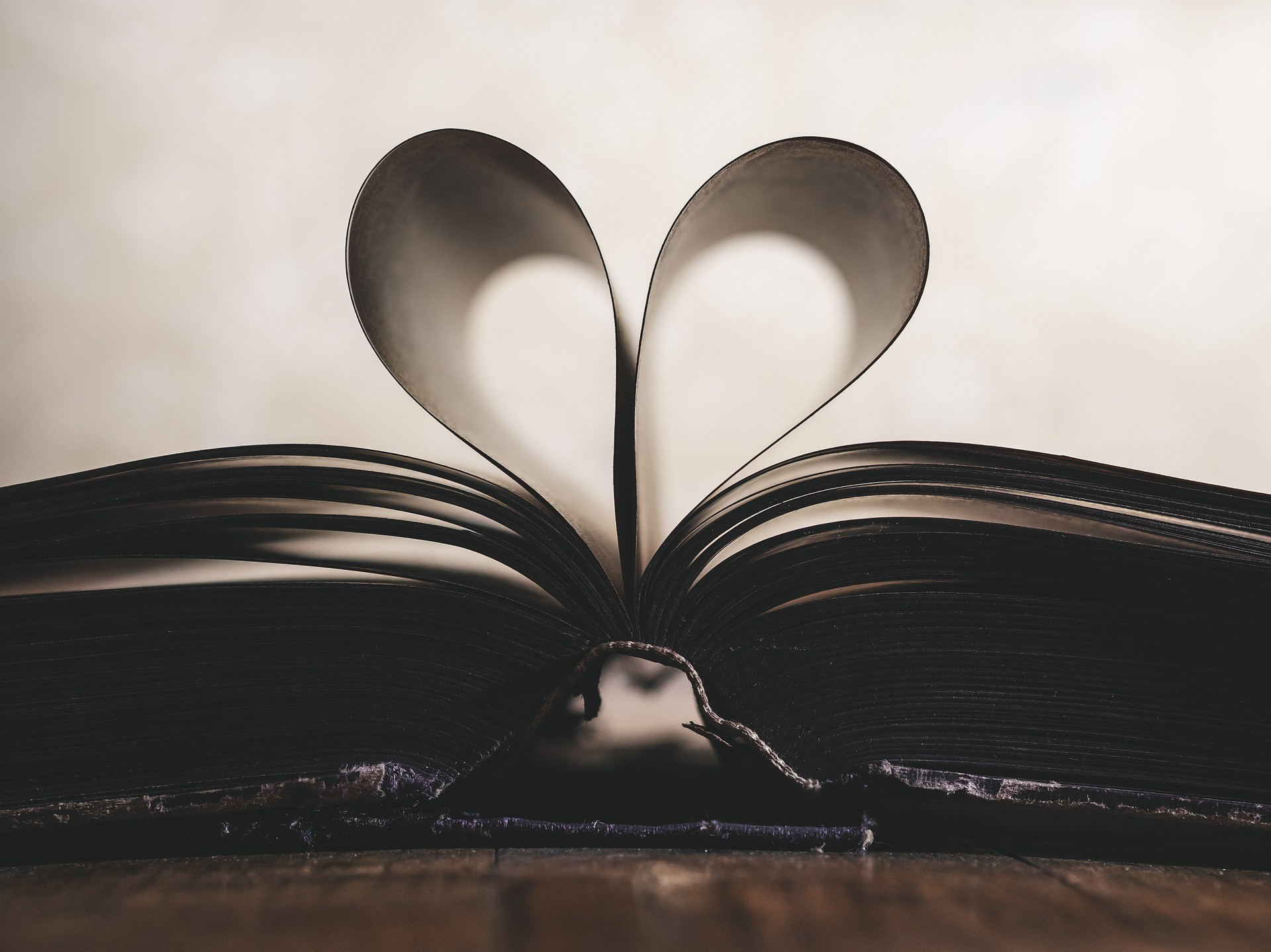 A closeup of the spine of a book with the pages folded to look like a love heart